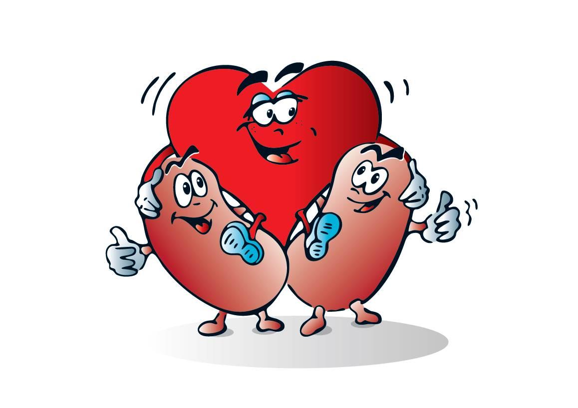 As medem onde arterial artérias a pressão
